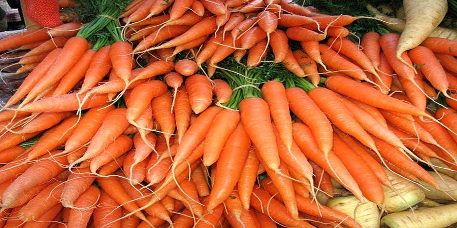 قیمت هویج