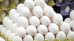 قیمت مرغ امروز 6 دی 99 + جزئیات