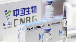 واکسن سینوفارم به درد این گروه سنی نمی خورد + جزئیات مهم