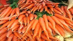 قیمت هویج در بازار سرسام آور شد
