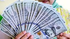 قیمت دلار امروز 15 اسفند 99 / قیمت دلار ریزشی می شود ؟ + جدول قیمت