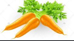 دلیل عجیب گرانی قیمت هویج + فیلم