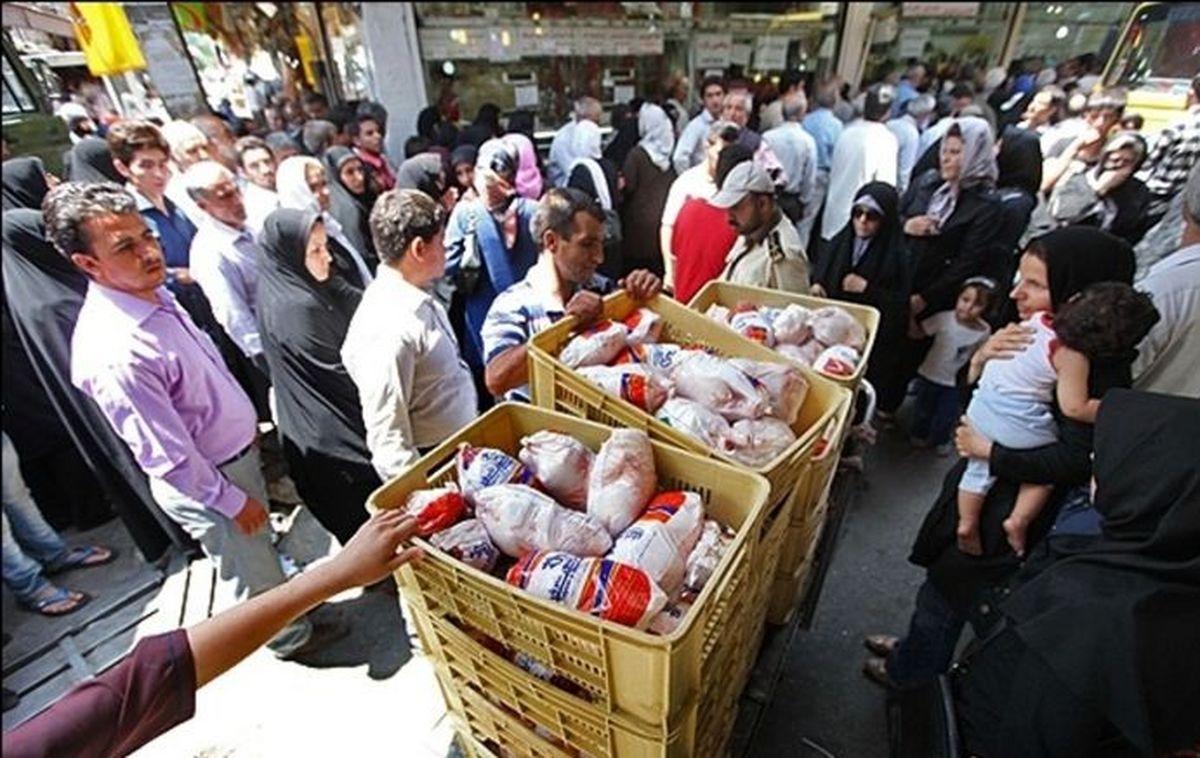 قیمت مرغ رو به افزایش است
