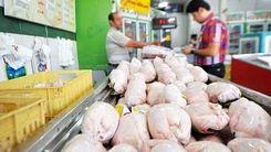 قیمت مرغ به ثبات رسید!/آخرین قیمت مرغ در ۴ دی 99