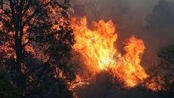 آتشسوزی مجدد در جنگلهای ارسباران