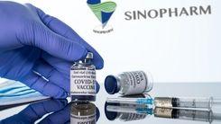 واکسن سینوفارم موثر یا بی تاثیر است ؟