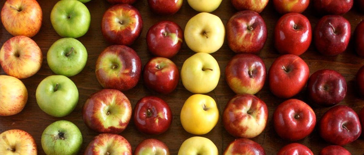چرا قیمت میوه از مزرعه تا خانه اینقدر متفاوت است؟